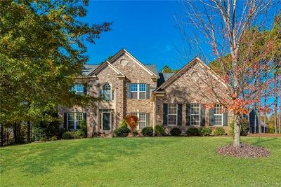 Charlotte Single Family Home For Sale: 17918 Durrango Court