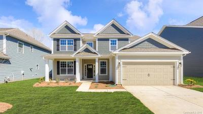 Mooresville, Kannapolis Single Family Home For Sale: 114 Sweet Leaf Lane #100