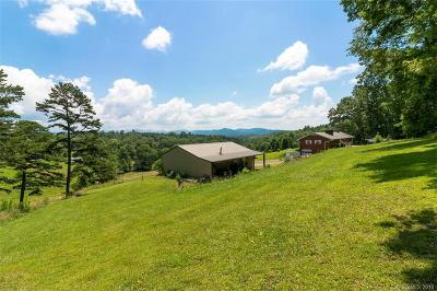 Single Family Home For Sale: 122 Jenkins Valley Road