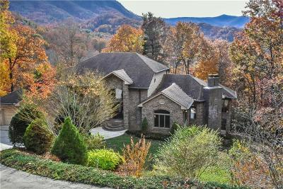Bat Cave, Black Mountain, Chimney Rock, Columbus, Gerton, Lake Lure, Mill Spring, Rutherfordton, Saluda, Tryon, Union Mills Single Family Home For Sale: 19 Timber Park Drive