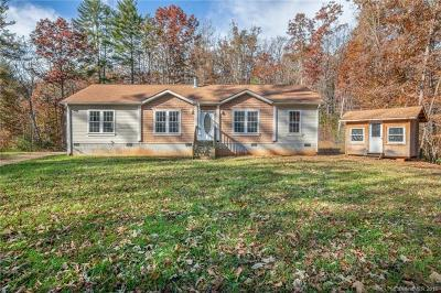 Fletcher Single Family Home For Sale: 93 Youngs Gap Road