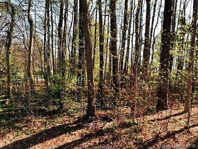 Charlotte NC Residential Lots & Land For Sale: $60,000