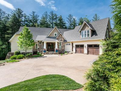 Asheville Single Family Home For Sale: 86 Brookline Drive