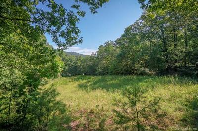 Lake Lure Residential Lots & Land For Sale: 794 Buffalo Creek Road #L01 BM28