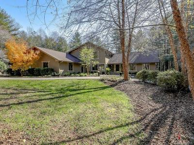 Hendersonville Single Family Home For Sale: 7 Westbridge Drive