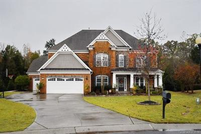 Waxhaw Single Family Home For Sale: 10110 Silverling Drive