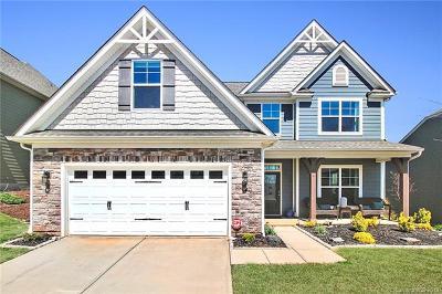 Charlotte Single Family Home For Sale: 9201 Loch Glen Way