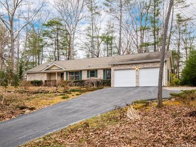 Hendersonville Single Family Home For Sale: 720 Salisbury Road