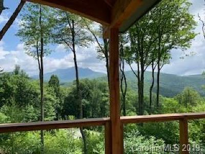 Linville NC Single Family Home For Sale: $995,000