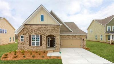 Waxhaw Single Family Home For Sale: 1008 Brunswick Way #1248