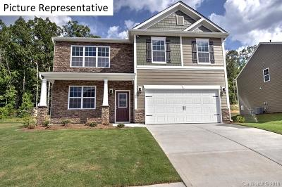Charlotte Single Family Home For Sale: 9732 Chase View Drive #2