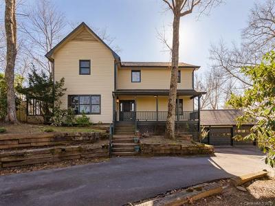 Mills River Single Family Home For Sale: 246 Sweetwater Road