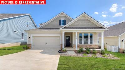 Sherrills Ford Single Family Home Under Contract-Show: 3749 Summer Haven Drive #101