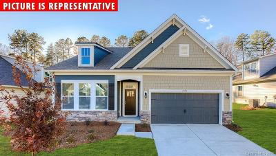 Statesville Single Family Home For Sale: 107 Canada Drive #94