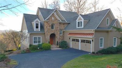 Asheville Single Family Home For Sale: 532 Sweetspire Ridge