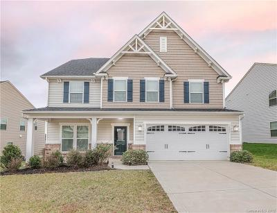Indian Land Single Family Home For Sale: 1351 Yellow Springs Drive