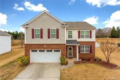 Fort Mill Single Family Home For Sale: 228 Sycamore Creek Road