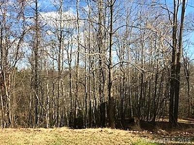 Henderson County Residential Lots & Land For Sale: Carriage Summit Way #2416