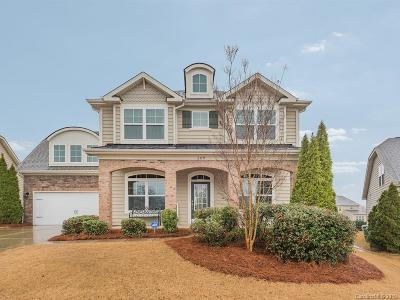 Fort Mill Single Family Home For Sale: 309 Thornhill Street