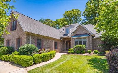 Mecklenburg County Single Family Home For Sale: 16506 Barcica Lane