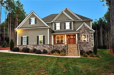 Mooresville Single Family Home For Sale: 169 Blue Ridge Trail #17