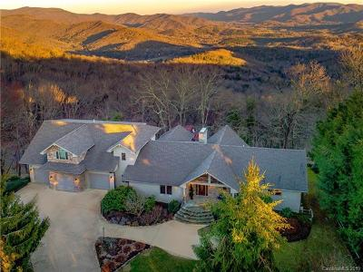 Asheville Single Family Home For Sale: 27 Peach Knob Drive