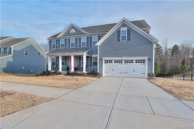 Fort Mill Single Family Home For Sale: 1671 Callahan Road