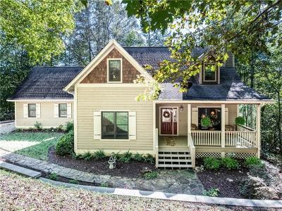Hendersonville Single Family Home For Sale: 24 Sky Vista Lane