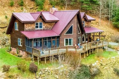 Marshall NC Single Family Home For Sale: $669,000