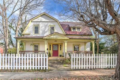 Single Family Home For Sale: 166 French Broad Avenue