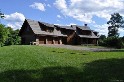 Burnsville Single Family Home For Sale: 268 Big Laurel Lane