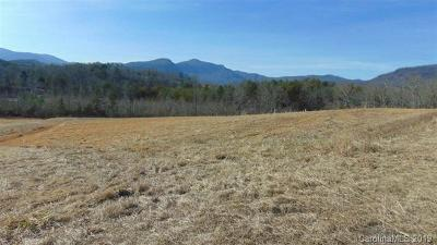 Bat Cave, Black Mountain, Chimney Rock, Columbus, Gerton, Lake Lure, Mill Spring, Rutherfordton, Saluda, Tryon, Union Mills Residential Lots & Land For Sale: McDaniel Road