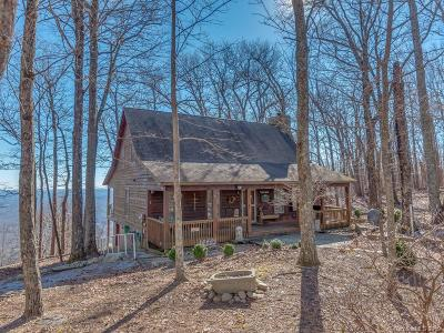 Bat Cave, Black Mountain, Chimney Rock, Lake Lure, Rutherfordton, Union Mills, Mill Spring, Columbus, Tryon, Saluda Single Family Home For Sale: 2036 Miller Mountain Road