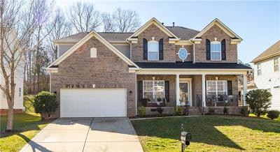Waxhaw Single Family Home For Sale: 8117 Brisbin Drive
