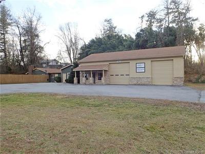Hendersonville Single Family Home For Sale: 3823 Asheville Highway