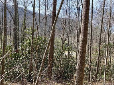 Henderson County Residential Lots & Land For Sale: Terrys Gap Road