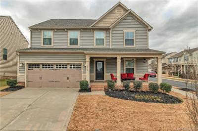Waxhaw Single Family Home For Sale: 2000 Oakmere Road