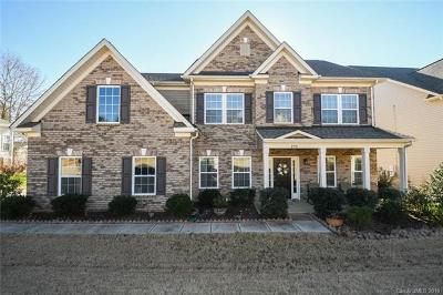 Fort Mill Single Family Home For Sale: 290 Fischer Road
