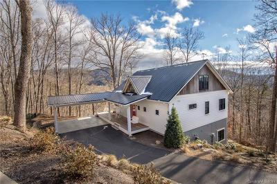 Buncombe County, Haywood County, Henderson County, Madison County Single Family Home For Sale: 98 Cole Ridge Road