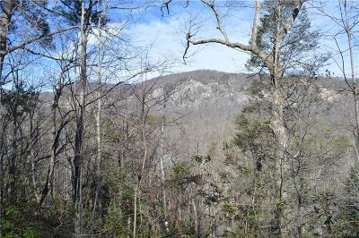 Bat Cave, Black Mountain, Chimney Rock, Columbus, Gerton, Lake Lure, Mill Spring, Rutherfordton, Saluda, Tryon, Union Mills Residential Lots & Land For Sale: Mintwood Court #20