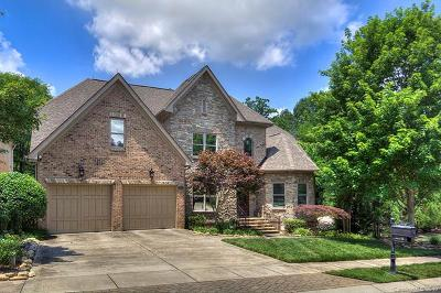 Charlotte Single Family Home For Sale: 6720 Larrisa Court