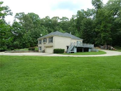 Mint Hill Single Family Home For Sale: 10424 Cairnsmore Place
