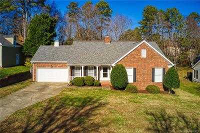 Charlotte Single Family Home For Sale: 613 Grays Creek Lane