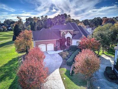 Mecklenburg County Single Family Home For Sale: 17303 Cove View Court