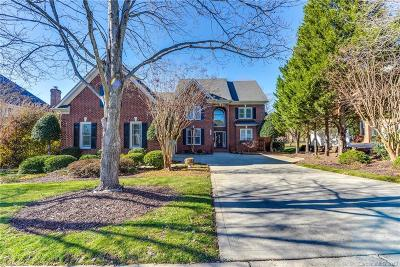 Huntersville Single Family Home For Sale: 15723 Northstone Drive