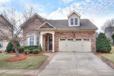 Fort Mill Single Family Home For Sale: 907 Treasure Court