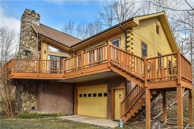 Hot Springs NC Single Family Home For Sale: $395,000