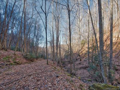 Buncombe County, Haywood County, Henderson County, Madison County Residential Lots & Land For Sale: Off Hemlock Springs Road
