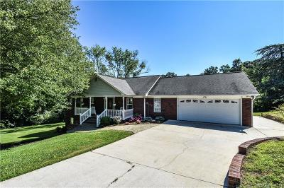 Statesville Single Family Home For Sale: 811 Ferndale Drive