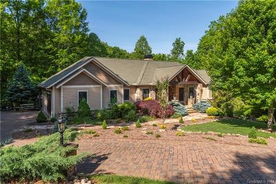 Buncombe County, Haywood County, Henderson County, Madison County Single Family Home For Sale: 660 Wickhams Fancy Drive #1004